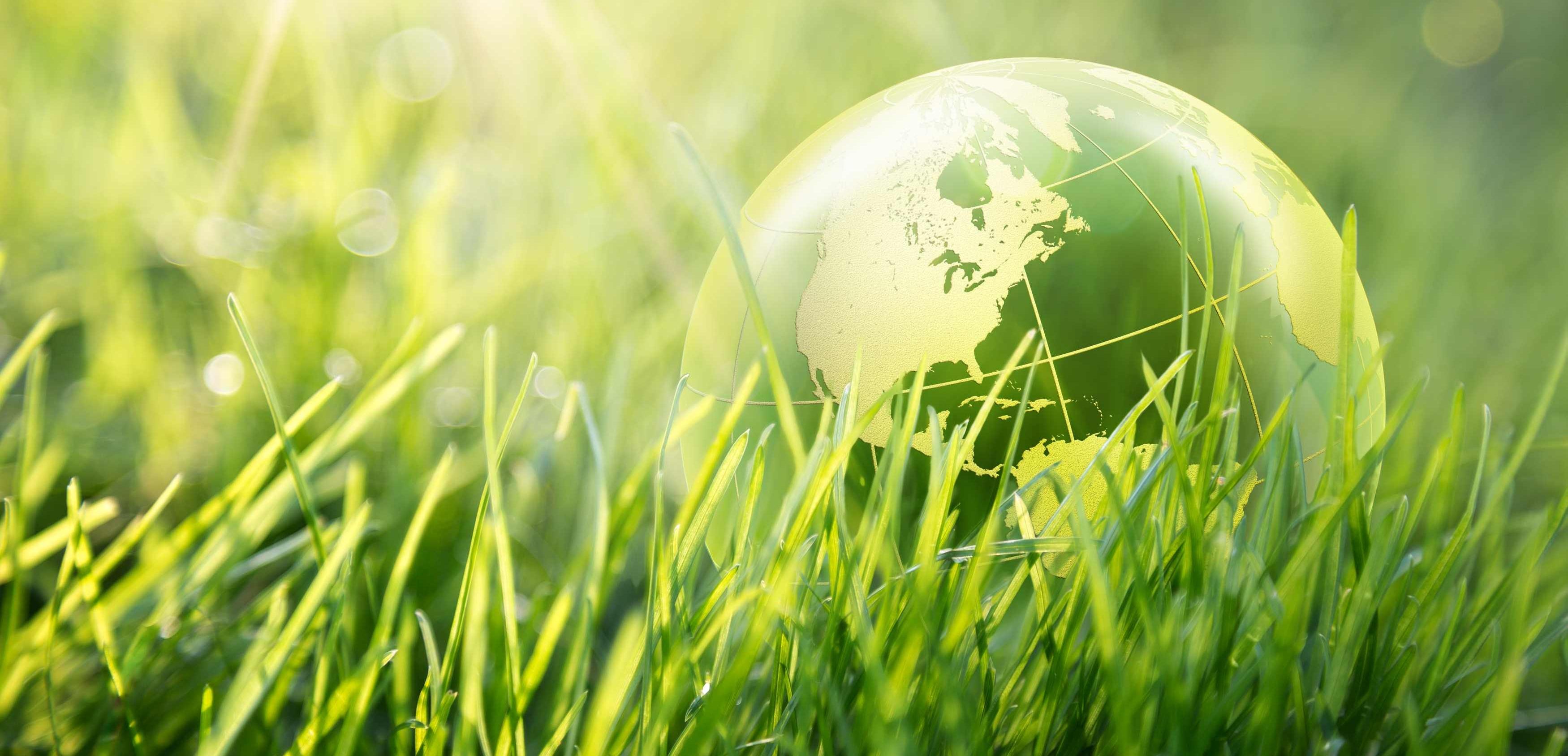 Törley és a környezetvédelem